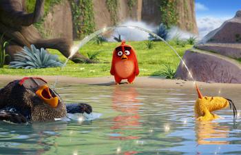 Box-office québécois : Un peu plus d'un demi-million pour les Angry Birds