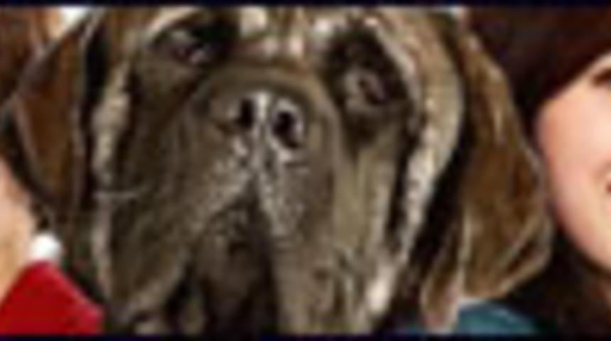 Affiche de la comédie familiale Hotel for Dogs