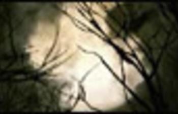 Pré-bande-annonce du film Le poil de la bête