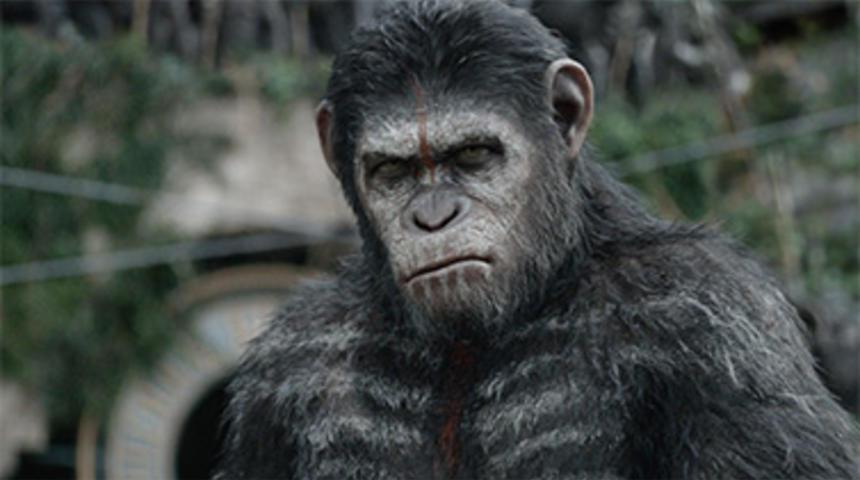 Box-office québécois : L'aube de la planète des singes récolte plus d'un million $