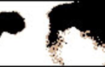 Soderbergh portera Che à l'écran