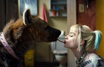 Box-office québécois : Harley Quinn déloge les Mauvais garçons