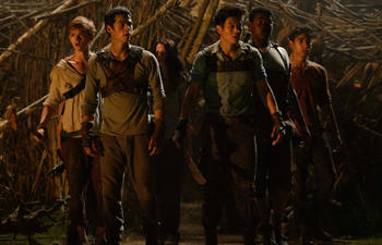 Sorties DVD : The Maze Runner