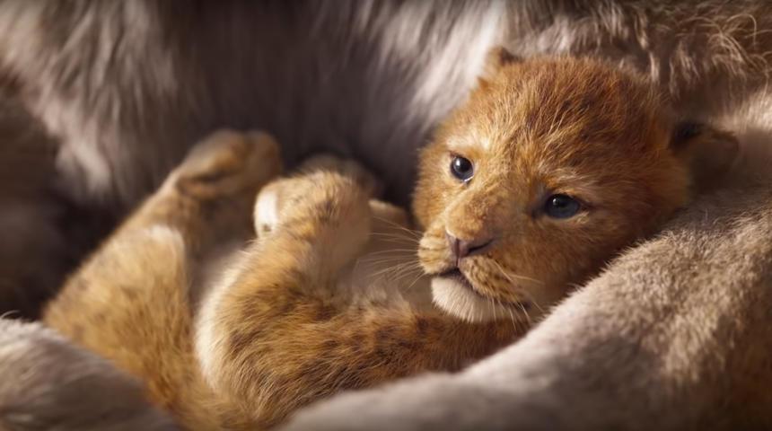 Première bande-annonce en français du nouveau Roi Lion
