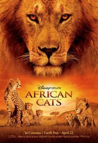 Félins d'Afrique
