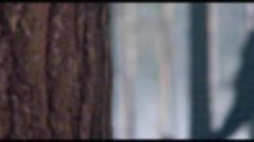 Nouvelle bande-annonce du film The Wolfman