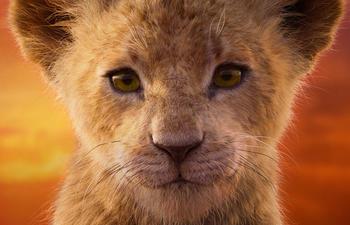 Box-office nord-américain : Disney séduit les cinéphiles avec son nouveau Lion King